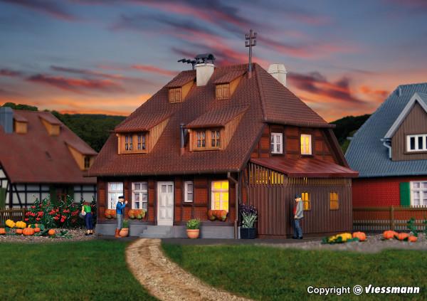 H0 Haus Mühlenweg im Spreewald
