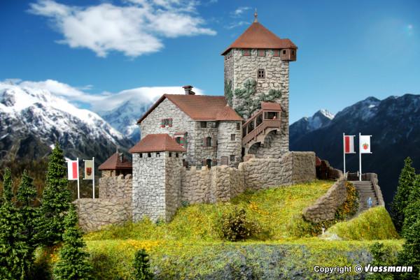 Z Burg Wildenstein