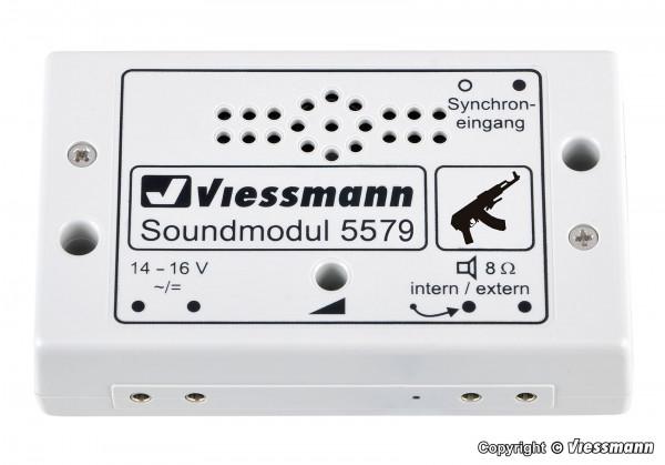 Soundmodul Schießstand